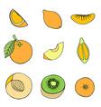 Fruit Icon Set vector image