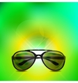 Sunglasses isolated background vector image