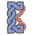 The letter in Celtic style vector image