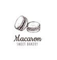 macaron macaroon macaron sketch hand drawing vector image