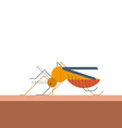 Mosquito bites skin vector image