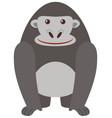 Gray gorilla on white background vector image