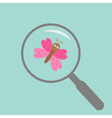 Butterfly insect under magnifier zoom lense Flat vector image