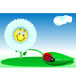 funny a flower and a ladybird vector image vector image