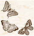 vintage background with flying butterflies vector image vector image