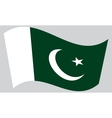 Flag of Pakistan waving on gray background vector image
