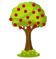 Green Apple tree full of red apples vector image vector image