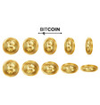 bitcoin 3d gold coins set realistic flip vector image