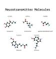 Neurotransmitter molecules set vector image