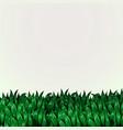 fresh grass banner eco concept vector image