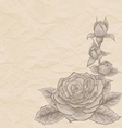 Vintage background Beautiful rose in the corner vector image