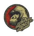 Gorilla Head Logo Mascot Emblem vector image