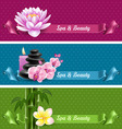 Spa banners vector image