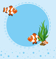 Border design with clownfish vector image vector image