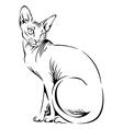 cat sphynx black vector image vector image
