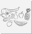 Fruits sketch vector image