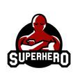 logo superman superhero costume defender city vector image
