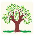tree in summer vector image