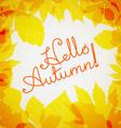 Hello autumn logo Fall concept vector image vector image