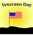 Veterans Day in USA vector image