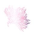 icon coral vector image vector image