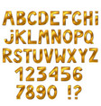 beautiful golden font isolated on white vector image