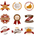 quality emblems and labels Best choice vector image vector image