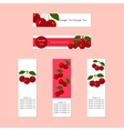 Banners with Juicy Ripe Cherry Fruit for Companies vector image
