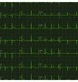 Typical human electrocardiogram green graph on vector image
