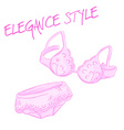 hand drawn pink lace bra and panties isolated on vector image
