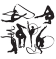 Gymnasts vector image