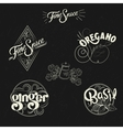 Spice logo set in vintage style Retro hand drawn vector image