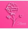 stylish beautiful flower set on background vector image
