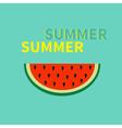 Watermelon slice seeds Flat design icon Summer vector image