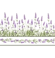 The Lavender Seamless frame line vector image