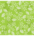 light green floral pattern vector image