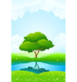 lush green landscape vector image vector image