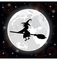 witch on a background of the full moon vector image