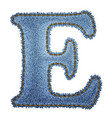 Jeans alphabet Denim letter E vector image