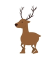 deer wildlife animal vector image