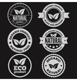Set of vintage logo label badge logotype vector image