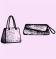 Womens handbags clutch bag vector image