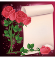 Greeting or invitation card with roses vector image