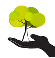 tree in human hand isolated on white background vector image