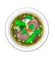 Thai Green Curry with Beef and Eggplant vector image vector image