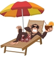 Monkey with a cocktail vector image