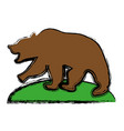 grizzly bear icon vector image
