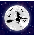 Silhouettes of witches and bats vector image