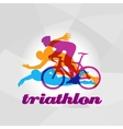 Color flat logo triathlon figures vector image
