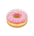 Donut isolated on white vector image